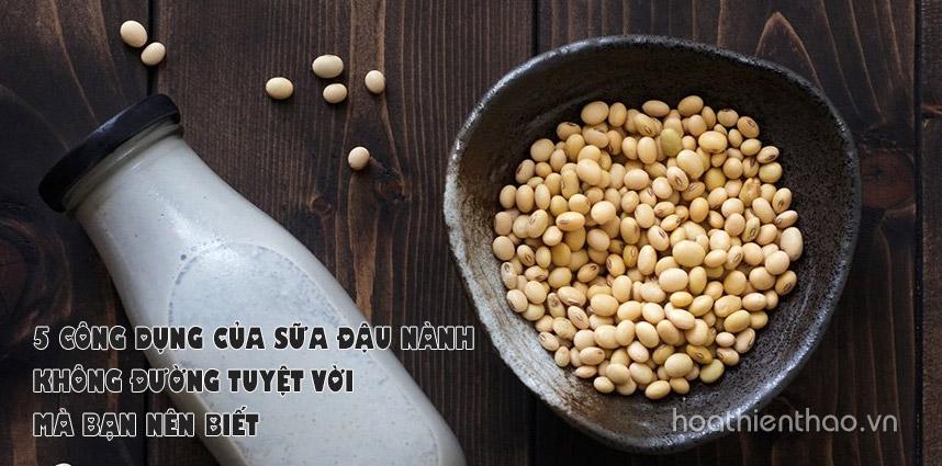 5 công dụng của sữa đậu nành không đường - Hoa Thien Thao Cosmetics