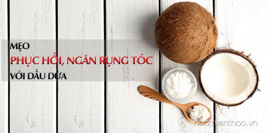 5 Công thức mặt nạ dưỡng tóc từ dầu dừa