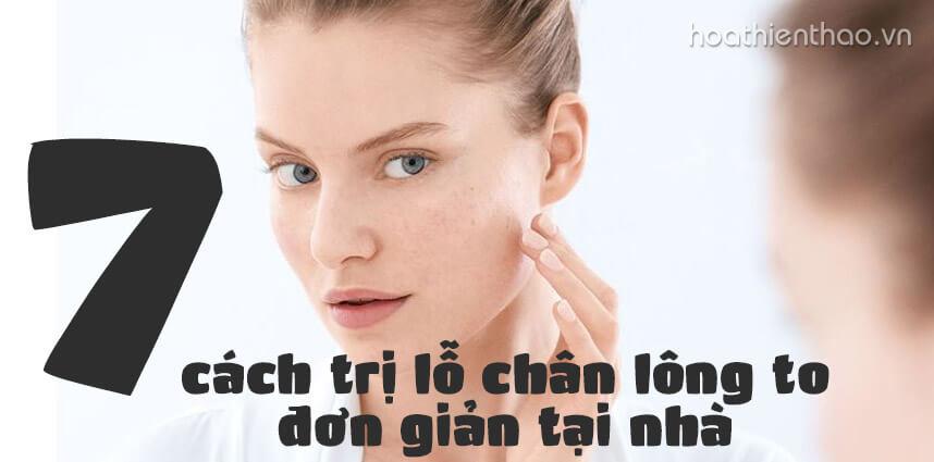 7 cách trị lỗ chân lông to đơn giản tại nhà - Hoa Thien Thao Cosmetics