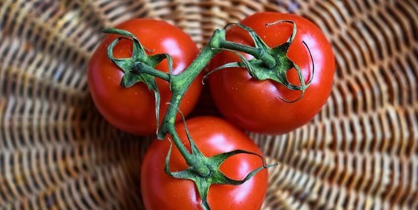 [Infographic] Trị sẹo mụn bằng cà chua hiệu quả