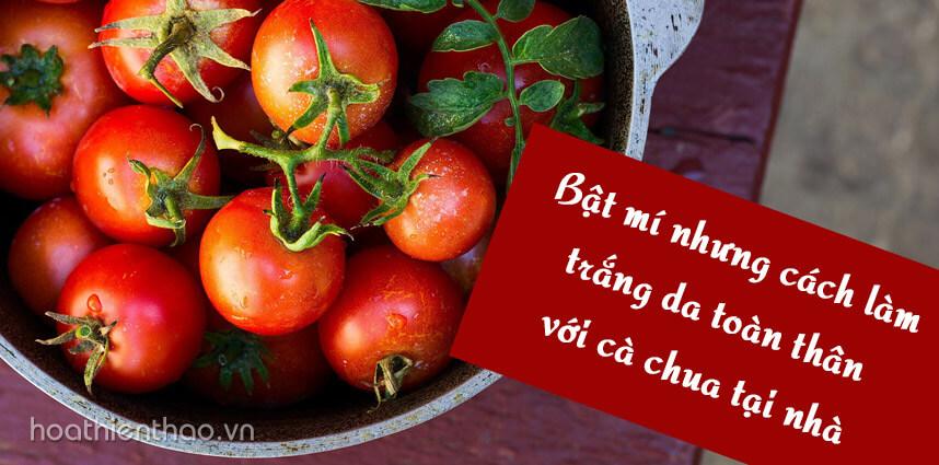 Bật mí những cách làm trắng da toàn thân với cà chua tại nhà