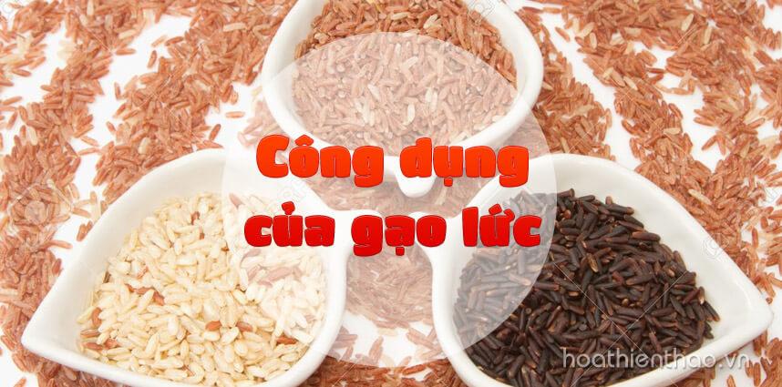 Công dụng của gạo lức: giảm cân khỏe mạnh - Hoa Thien Thao Cosmetics