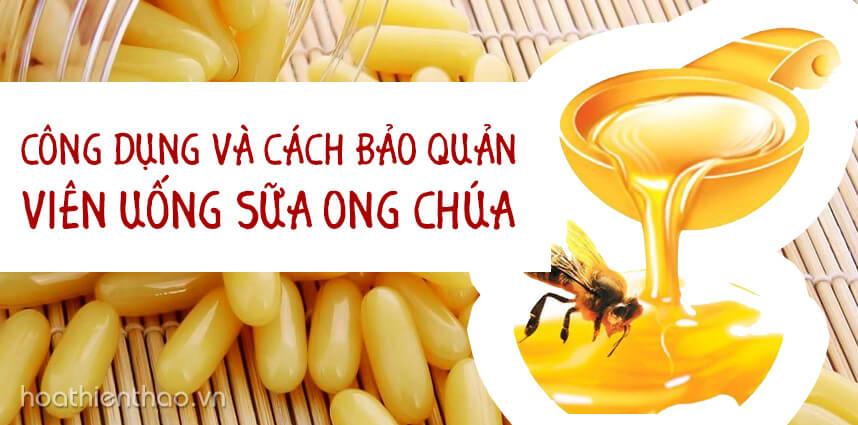 Công dụng và cách bảo quản viên uống sữa ong chúa - Hoa Thiên Thảo