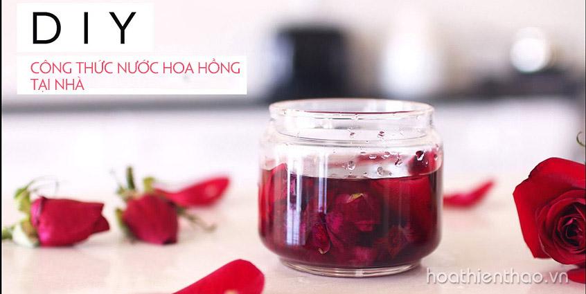 DIY công thức nước hoa hồng tại nhà