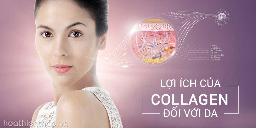 Lợi ích của collagen đối với da