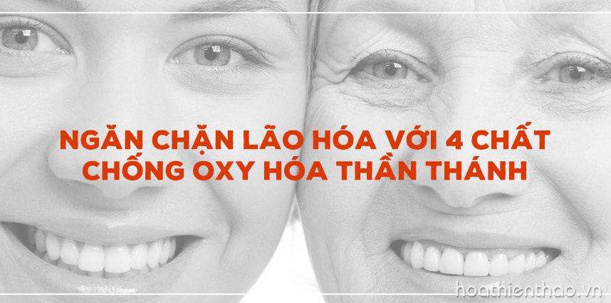 Ngăn chặn lão hóa với 4 chất chống oxy hóa - Hoa Thiên Thảo