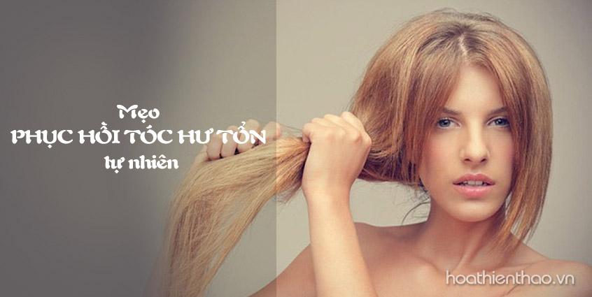 Phục hồi tóc hư tổn với công thức tự nhiên