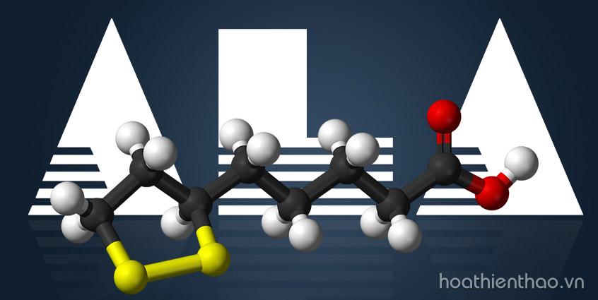Thành phần Alpha Lipoic Acid có công dụng gì?