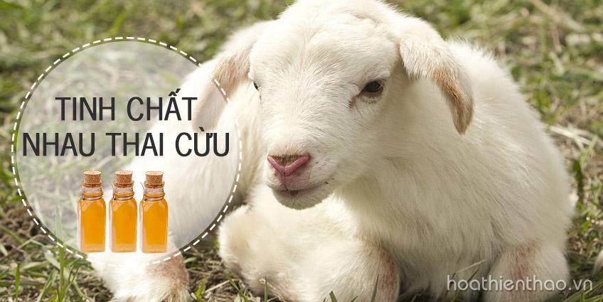 Tinh chất nhau thai cừu có thật sự tốt như quảng cáo?