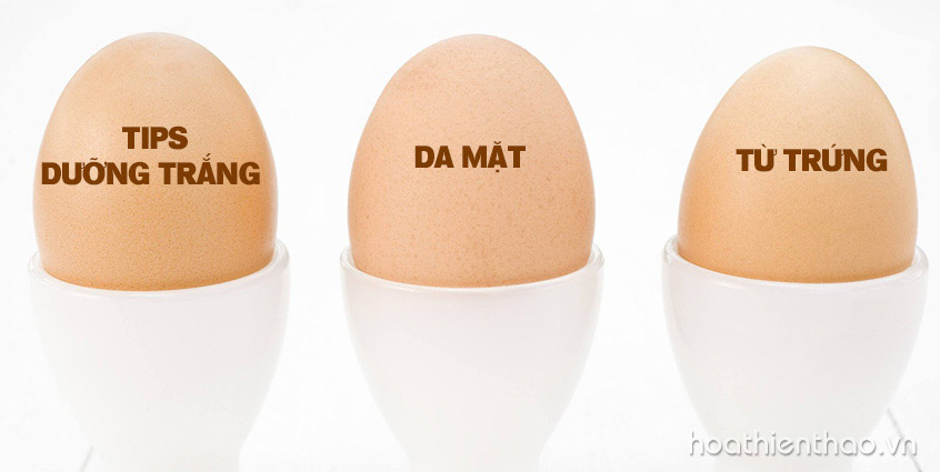Tips dưỡng trắng da mặt từ lòng trắng trứng