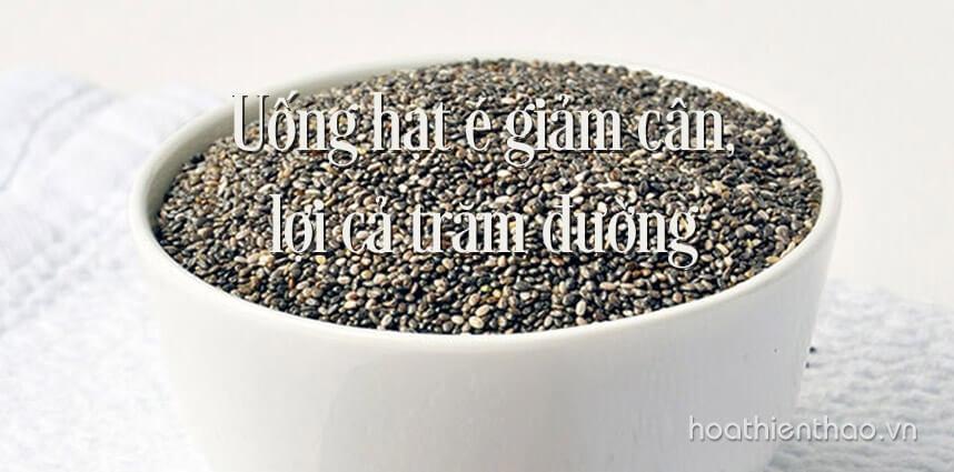 Uống hạt é giảm cân lợi cả trăm đường - Hoa Thien Thao Cosmetics