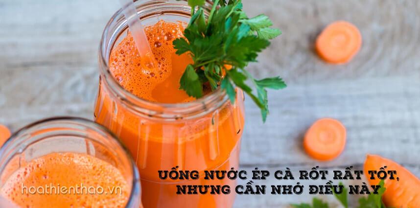 Uống nước ép cà rốt rất tốt, nhưng cần nhớ điều này - Hoa Thien Thao