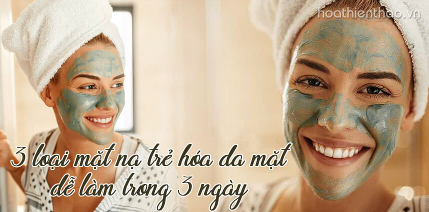 3 loại mặt nạ trẻ hóa da mặt dễ làm trong 3 ngày - Hoa Thiên Thảo