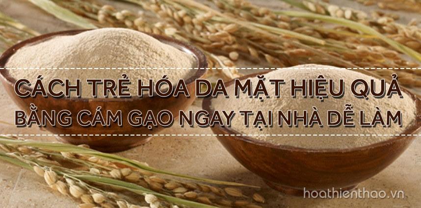 Cách trẻ hóa da mặt hiệu quả bằng cám gạo - Hoa Thien Thao Cosmetics