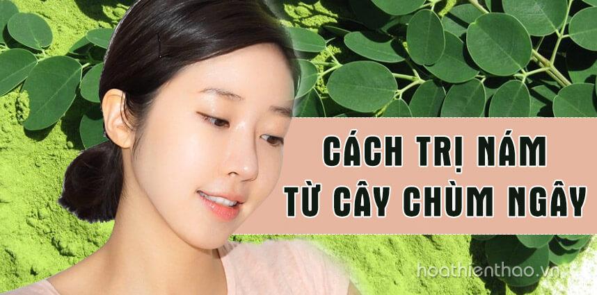 Bỏ túi cách trị nám từ cây chùm ngây hiệu quả - Hoa Thiên Thảo