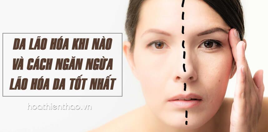 Da lão hóa khi nào và cách ngăn ngừa lão hóa da tốt nhất - Hoa Thien Thao Cosmetics