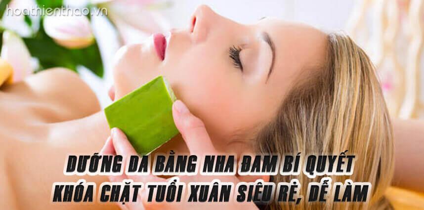Dưỡng da bằng nha đam bí quyết khóa chặt tuổi xuân - Hoa Thien Thao Cosmetics