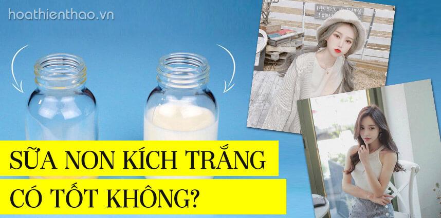 Giải đáp sữa non kích trắng có tốt không - Hoa Thiên Thảo
