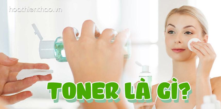Toner là gì Hướng dẫn cách tự làm toner cho da dầu tại nhà - Hoa Thiên Thảo